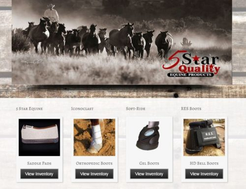 eCommerce – Wild and Western